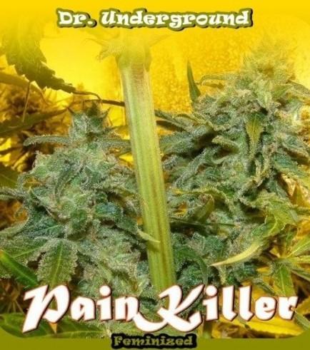 PainKiller (Dr. Underground)