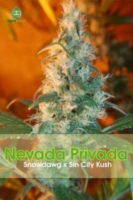 Nevada Privada