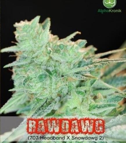 Rawdawg (Alphakronik Genes)