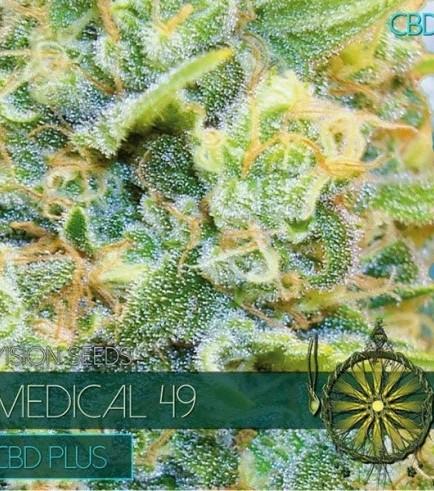 Medical 49 (Vision Seeds)