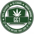 Sister Glue (GG Strains)