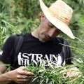 Franco Loja (Strain Hunters/Greenhouse Seeds)
