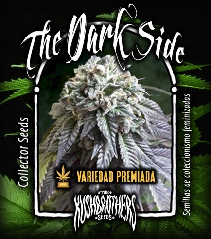 The Dark Side (KushBrothers)