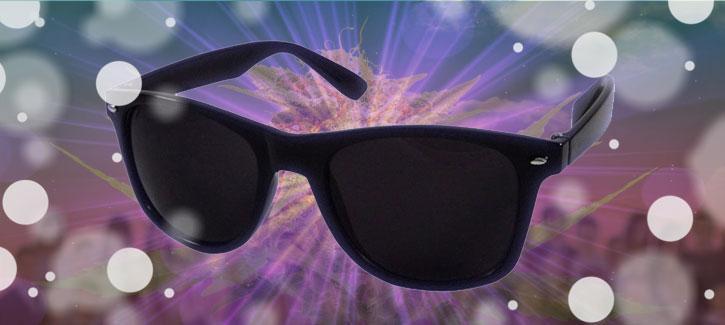 1. gafas de sol