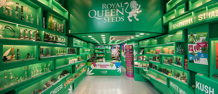 Royal Queen Seeds Shop in Barcelona