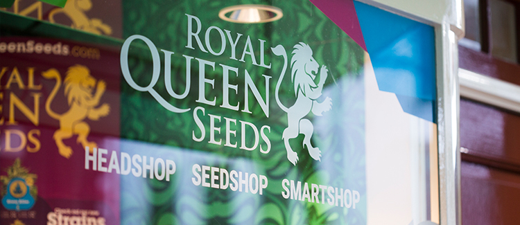 Royal Queen Seeds logo on door