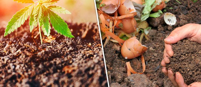 4. get better soil