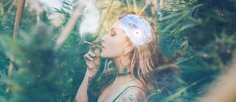 CANNABIS AND THE PINEAL GLAND
