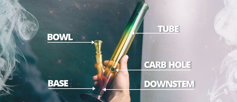 ANATOMY OF THE BONG