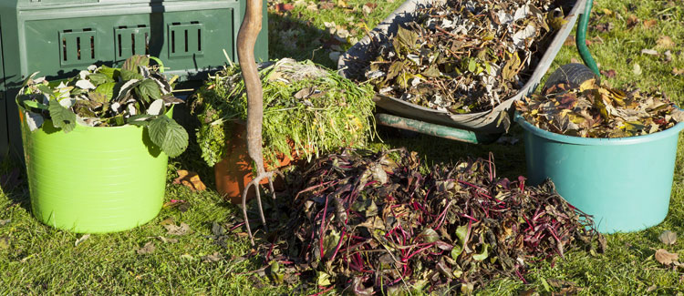 Compost first to prevent any unwanted organisms