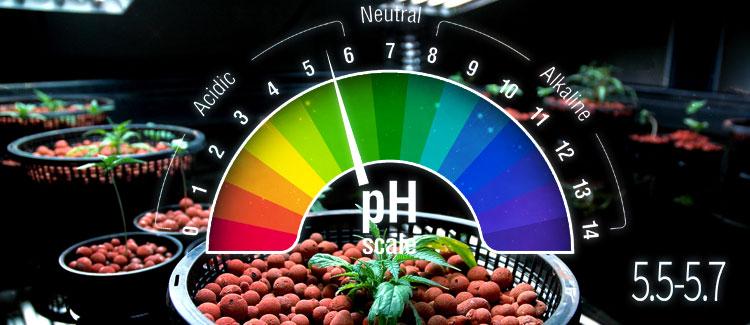 HIDRO pH ideal: 5,5-5,7