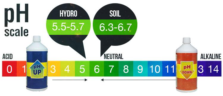 ¿CÓMO CORREGIR EL pH DEL AGUA Y LOS FERTILIZANTES?