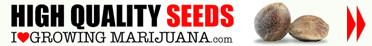 Get your Marijuana Seeds At I Love Growing Marijuana