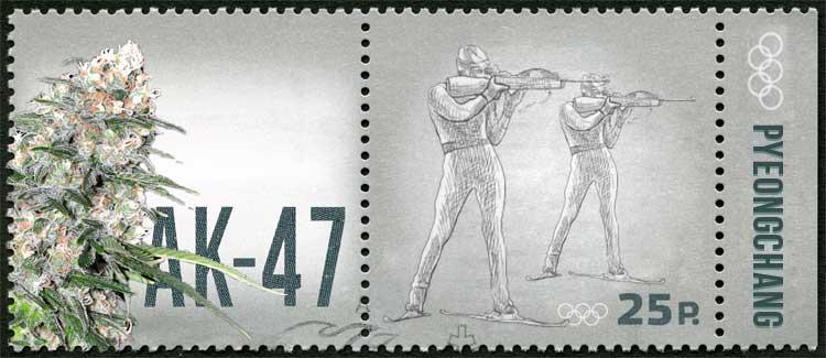 Biathlon - ak-47