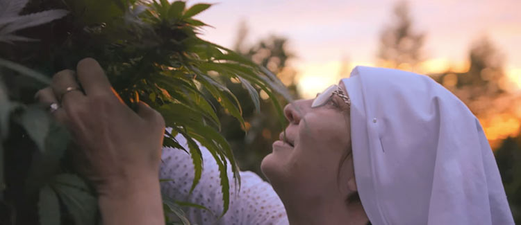 Weed-nuns on a mission