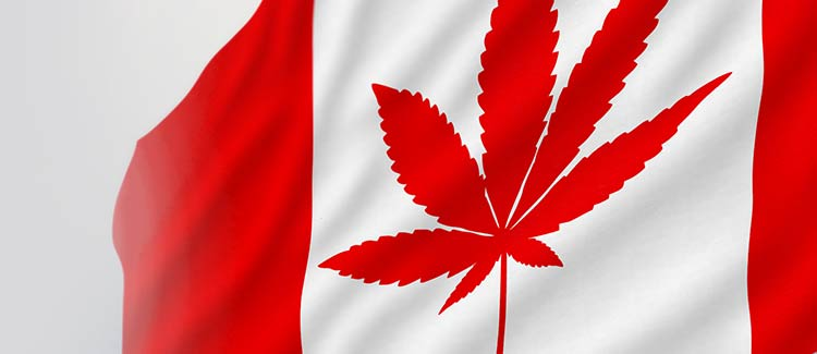 Kanada sucht noch nach lösungen
