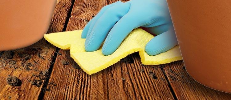 5. limpia los derrames de inmediato