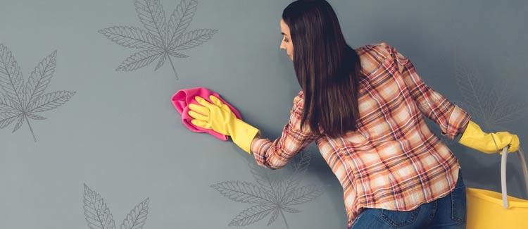 1. pulisci le pareti di casa