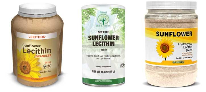 ¿cuáles son las fuentes más seguras de lecitina?