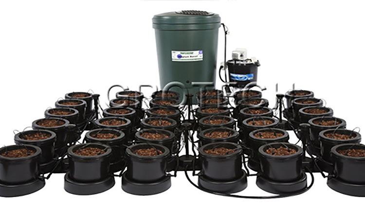 Drain Systems For Growing Cans