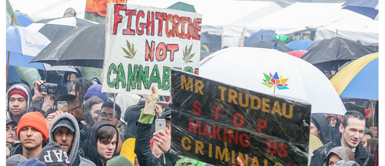 Cannabis legalization in Canada: A first-year summary