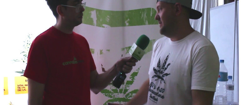 Interview with Fast Buds