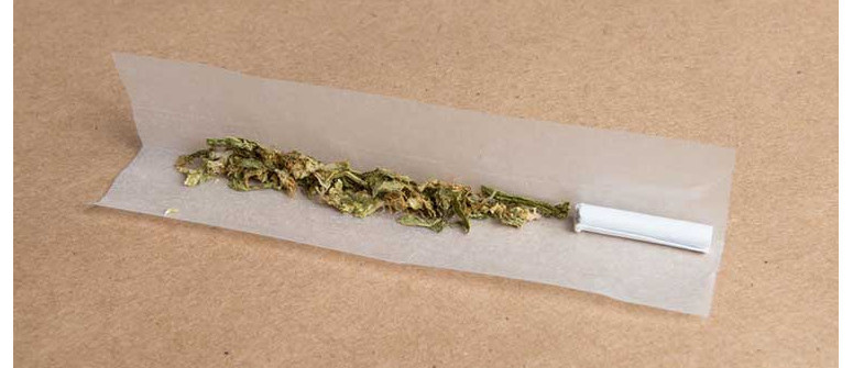 10 potential uses for hemp paper