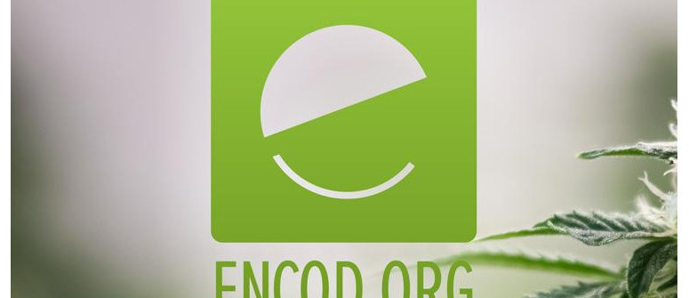 Encod (european coalition for just and effective drug policy)