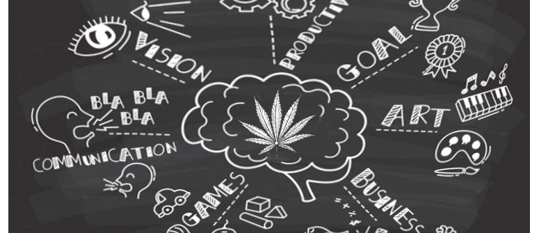 How marijuana can actually improve productivity