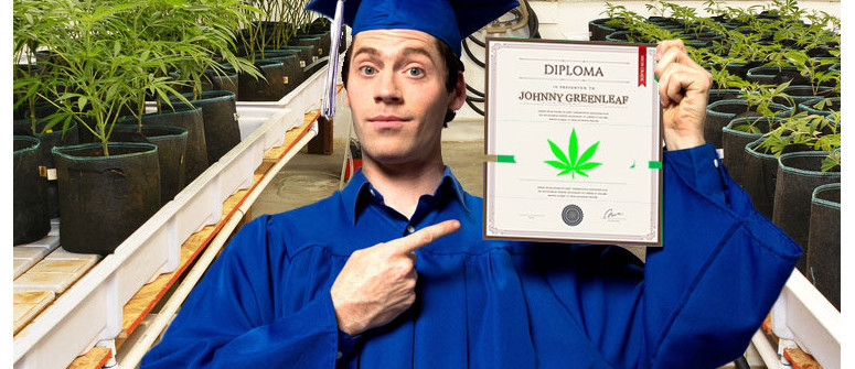 Higher education: marijuana colleges and universities