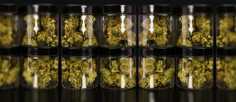 How to store weed the best way