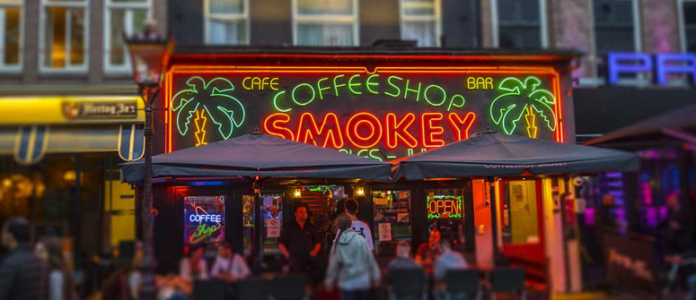 Amsterdam coffeeshops: 15 tips for first timers