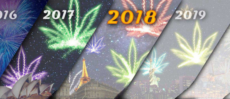 Happy New Year From CannaConnection!