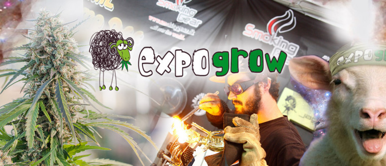 Expogrow - A dank event for all cannabis enthusiasts