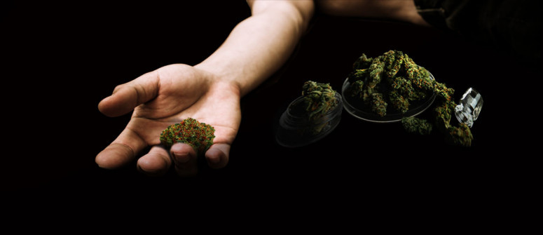 Can you die from a marijuana overdose?