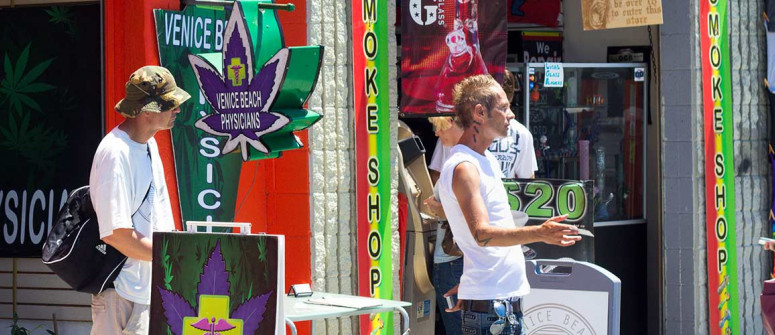 Weed in california: how to buy legal cannabis in california?