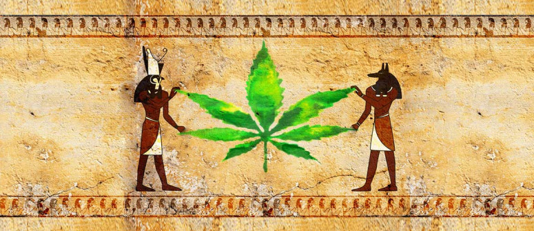 Cannabis in ancient Egypt