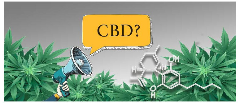 10 Facts about CBD you may not know