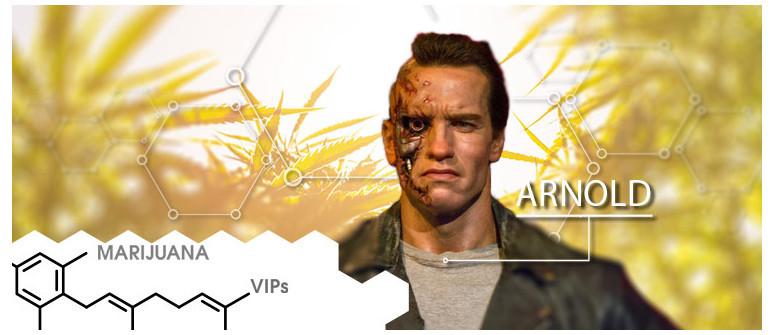 Marijuana VIP: Arnold Schwarzenegger