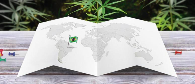 Legal status of marijuana in Brazil