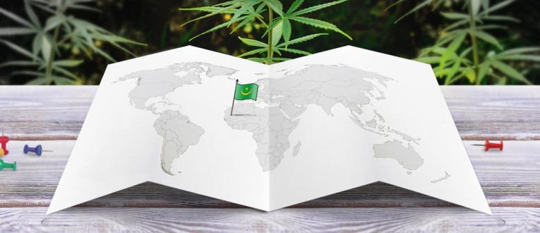 Legal status of marijuana in Mauritania