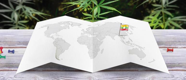 Legal status of marijuana in Myanmar (Burma)
