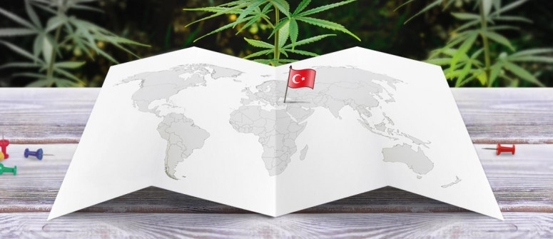 Legal Status of Marijuana in Turkey