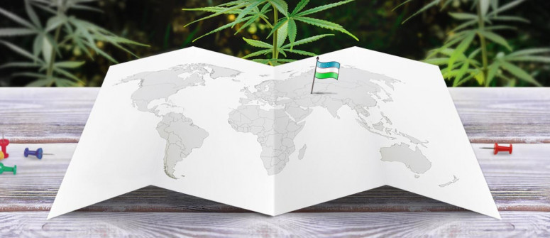 Legal status of marijuana in Uzbekistan
