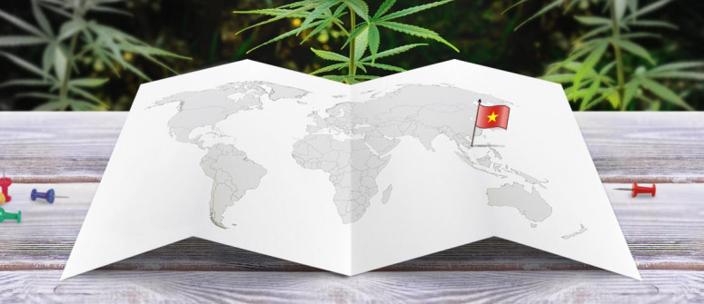 Legal status of marijuana in Vietnam