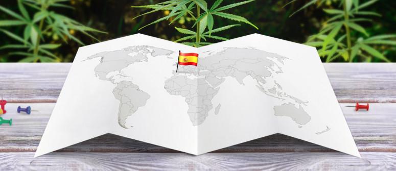 Legal Status of Marijuana in Spain