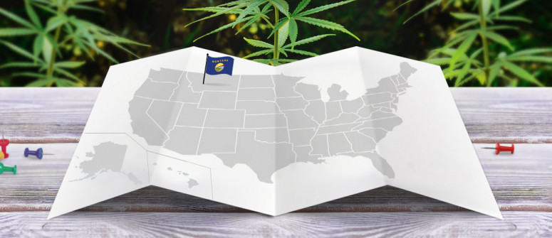 Legal status of marijuana in the state of Montana