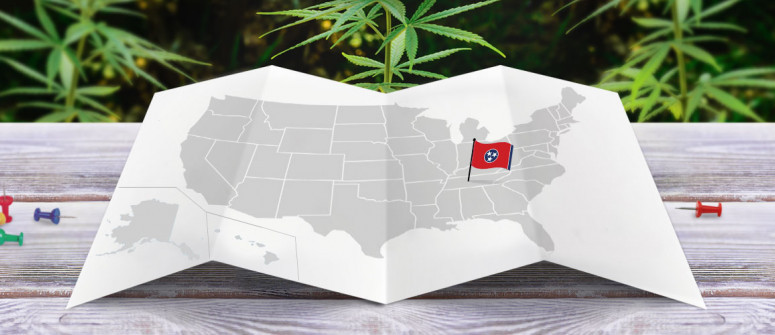 Legal status of marijuana in the state of Tennessee