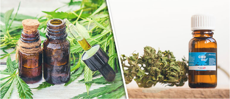 top cbd oil