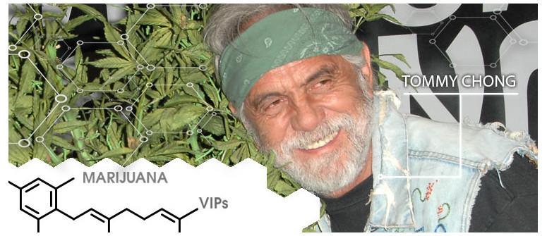 Marijuana VIP: Tommy Chong